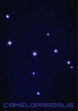 Costellazione della stella di Camelopardalis Fotografie Stock Libere da Diritti