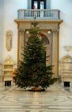 Costes grandes del abeto adornados con las guirnaldas de la Navidad Fotografía de archivo