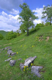 Costesti Dacian Ruins Stock Image