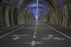 Costiero ciclabile di parco di Pista del percorso della bici Fotografia Stock Libera da Diritti
