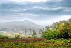 Costigliole d`Asti Piedmont- Italy: landscape of vine and grap