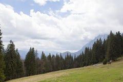 Costila mountain Royalty Free Stock Photo