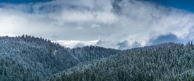 Costila peak in the winter. Costila peak in Bucegi mountains Romania, during the winter Royalty Free Stock Image