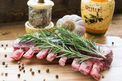 Costillas crudas del cordero con romero, pimienta, ajo y aceite en el tablero de madera imágenes de archivo libres de regalías