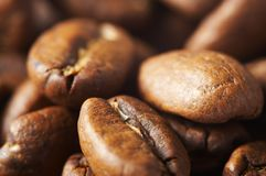 Costing on coffee grain. Cup with coffee, costing on coffee grain Stock Images