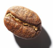 Costing on coffee grain. Cup with coffee, costing on coffee grain Stock Photography