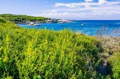 Costline用花岗岩岩石和惊人的天蓝色的水在波尔图Pollo,撒丁岛,意大利 库存照片