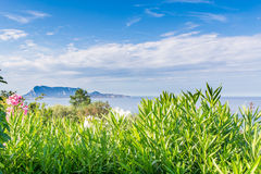 Costlinen i Sardinia Arkivbild
