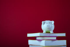 Costo di istruzione Fotografia Stock