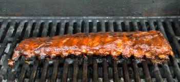 Costole della parte posteriore del bambino del barbecue Immagine Stock Libera da Diritti