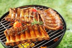 Costole di maiale piccanti succulenti su un barbecue Immagine Stock