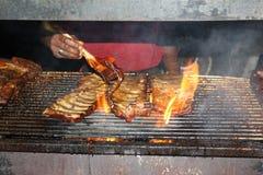 Costole sul barbecue Fotografie Stock Libere da Diritti