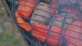 Costoleta da carne fritada na grade com pimenta doce vermelha búlgara vídeos de arquivo