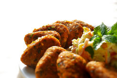Costoleta indiana do alimento Imagens de Stock Royalty Free