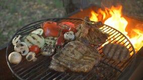 A costoleta suculenta e saboroso do hamburguer do BBQ, bife, grelhou o pé de galinha, legumes frescos e as especiarias no verão t filme