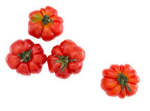 Costoluto tomatoes - Italian old fashioned variety, delicious Royalty Free Stock Images