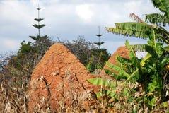 Costruendo una casa fatta di fango e di argilla in Pomerini in Tanzania - Fotografia Stock Libera da Diritti