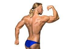 Costruttore di corpo maschio attraente su fondo bianco Fotografia Stock