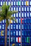 Costruzione blu con le finestre rosse, gialle e verdi con una palma nella parte anteriore Immagini Stock