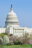 Costruzione del Campidoglio degli Stati Uniti in primavera - Washington DC Fotografie Stock