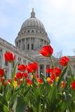Costruzione del Campidoglio dello stato di Wisconsin, punto di riferimento hystorical Fotografie Stock