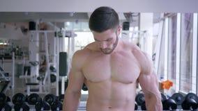 Costruzione del muscolo, forte sportivo che fa esercizio di forza con le teste di legno in mani durante l'addestramento di potere stock footage