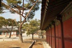 Costruzione del palazzo in Asia Fotografie Stock