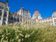 Costruzione del Parlamento, Budapest, Ungheria Fotografia Stock