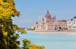 Costruzione del Parlamento dell'Ungheria Immagine Stock Libera da Diritti