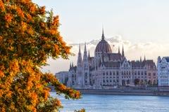 Costruzione del Parlamento dell'Ungheria Immagini Stock