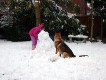 Costruzione del pupazzo di neve del cane e del bambino Fotografia Stock