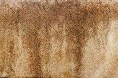 Costruzione della roccia di parete di pietra Fotografia Stock Libera da Diritti