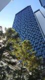Costruzione di appartamento alta con il patio a Bangkok, Tailandia Fotografie Stock Libere da Diritti