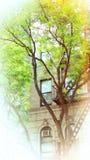 Costruzione di appartamento di buon umore Fotografie Stock Libere da Diritti