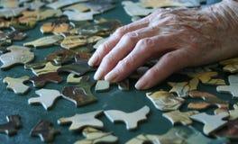 Costruzione di puzzle Fotografia Stock