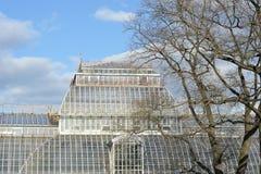 Costruzione di vetro delle serre del giardino botanico Fotografia Stock