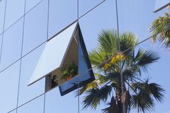 Costruzione e vegetazione di vetro moderne Immagine Stock
