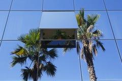 Costruzione e vegetazione di vetro moderne Immagine Stock Libera da Diritti