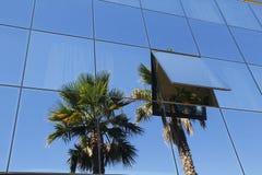 Costruzione e vegetazione di vetro moderne Fotografie Stock