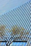 costruzione ed alberi del cctv Fotografia Stock