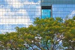 Costruzione ed albero moderni fotografia stock