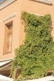 Costruzione invasa in Rhodes Old Town Immagini Stock