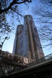 Costruzione metropolitana di governo di Tokyo Fotografia Stock
