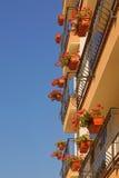 Costruzione moderna con i canestri d'attaccatura floreali sui rai dei balconi Immagine Stock Libera da Diritti