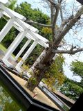 Costruzione molto bella in Sri Lanka fotografia stock