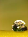 Costruzione sulla gocciolina di acqua Fotografia Stock Libera da Diritti