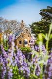 Costruzione variopinta del mosaico nel parco Guell Fiore viola della lavanda in priorità alta Anche la luce calda di Sun, Barcell Immagini Stock