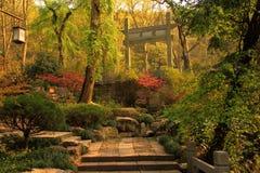 Costruzioni antiche nel parco, Hangzhou, Cina Immagine Stock