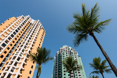 Costruzioni di appartamento e palme Fotografie Stock Libere da Diritti