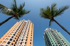 Costruzioni di appartamento e palme Fotografie Stock